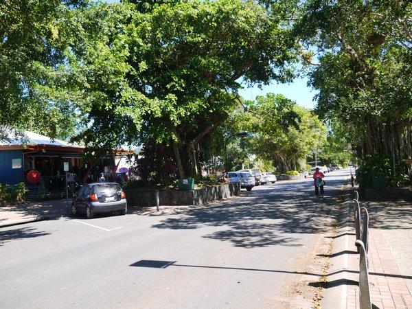 キュランダ村 散歩 kuranda