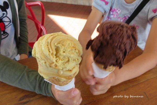 ケアンズ おすすめアイスクリーム MOOZ