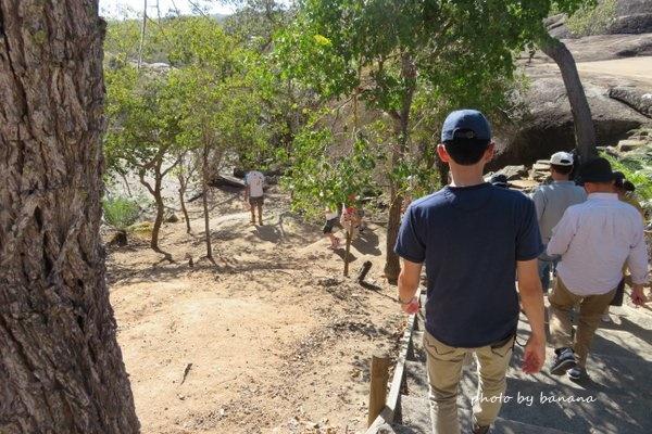 ケアンズ 子供おすすめツアー ジェイさんの動物探検ツアー ワラビーの餌付け